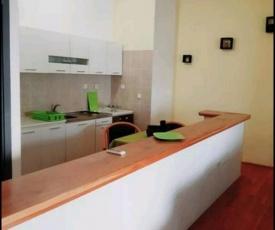 Apartments Dragicevic